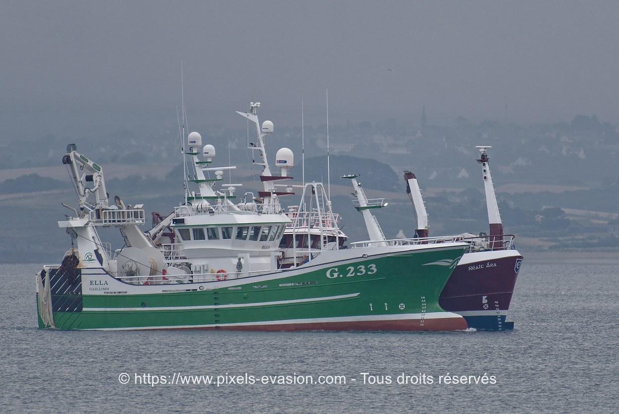 Ella G.233 Atlantic Dawn Group