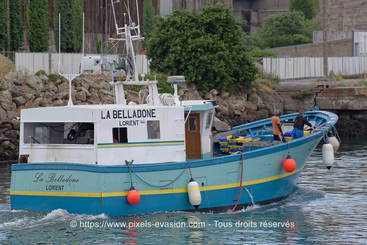 La Belladone LO 614655