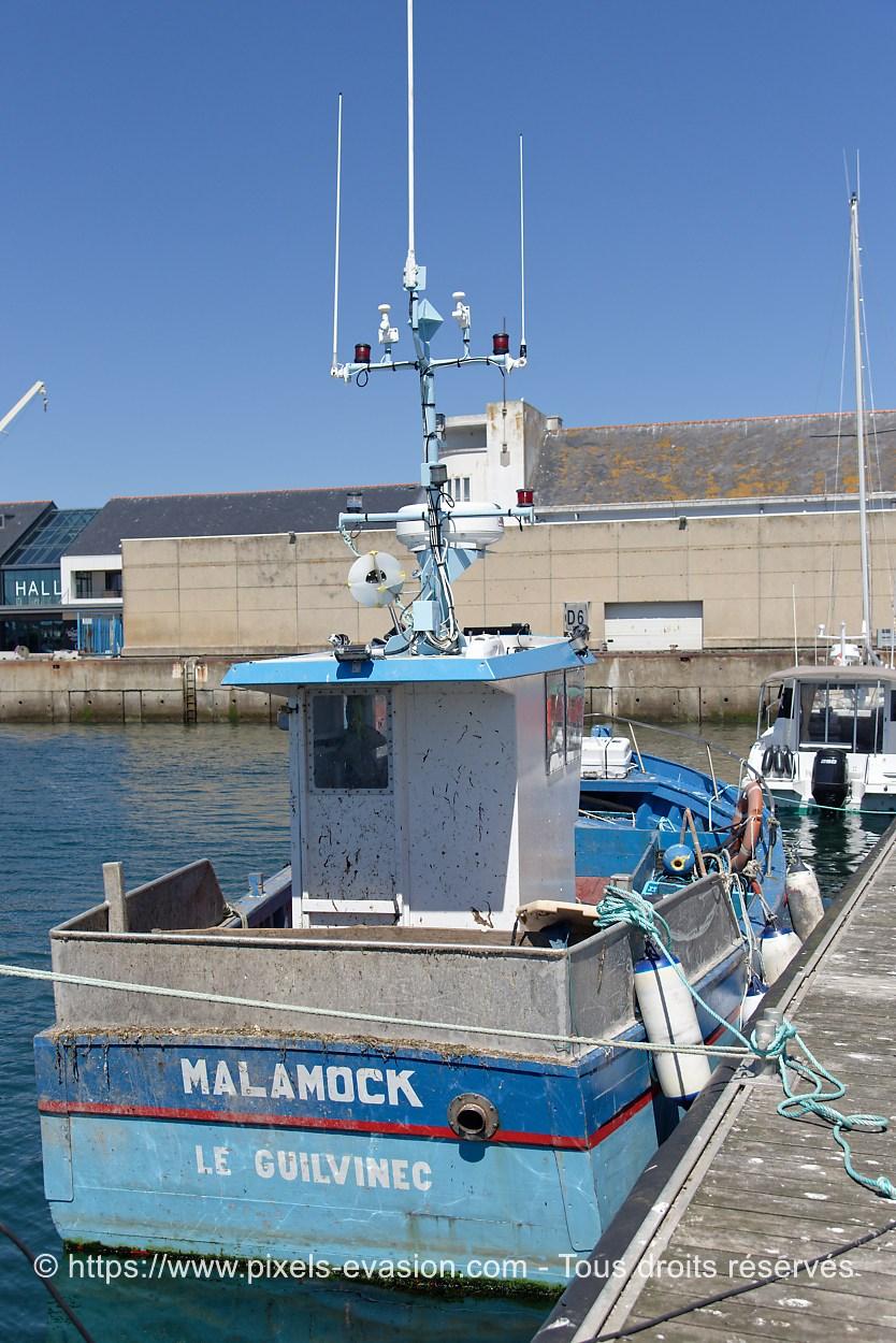 Malamock GV 176228