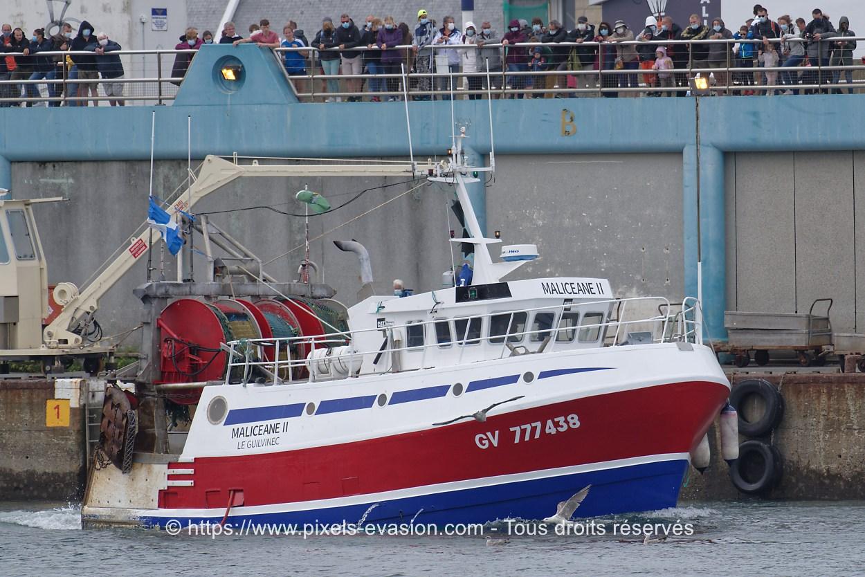 Maliceane II GV 777438